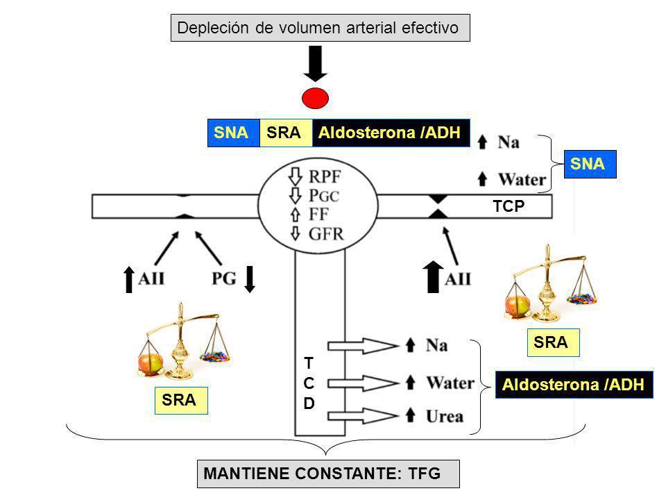 Depleción de volumen arterial efectivo