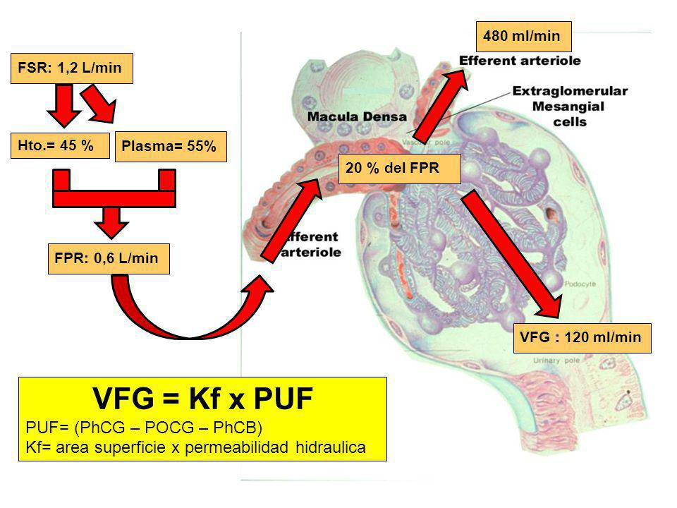 VFG = Kf x PUF PUF= (PhCG – POCG – PhCB)