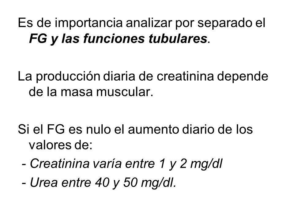 Es de importancia analizar por separado el FG y las funciones tubulares.