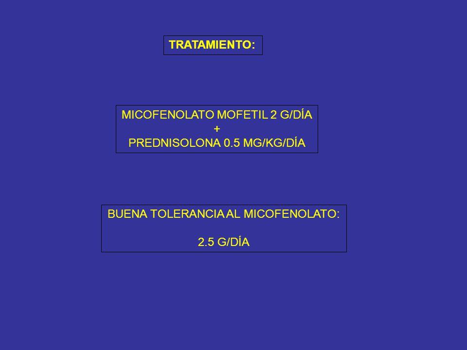 MICOFENOLATO MOFETIL 2 G/DÍA + PREDNISOLONA 0.5 MG/KG/DÍA