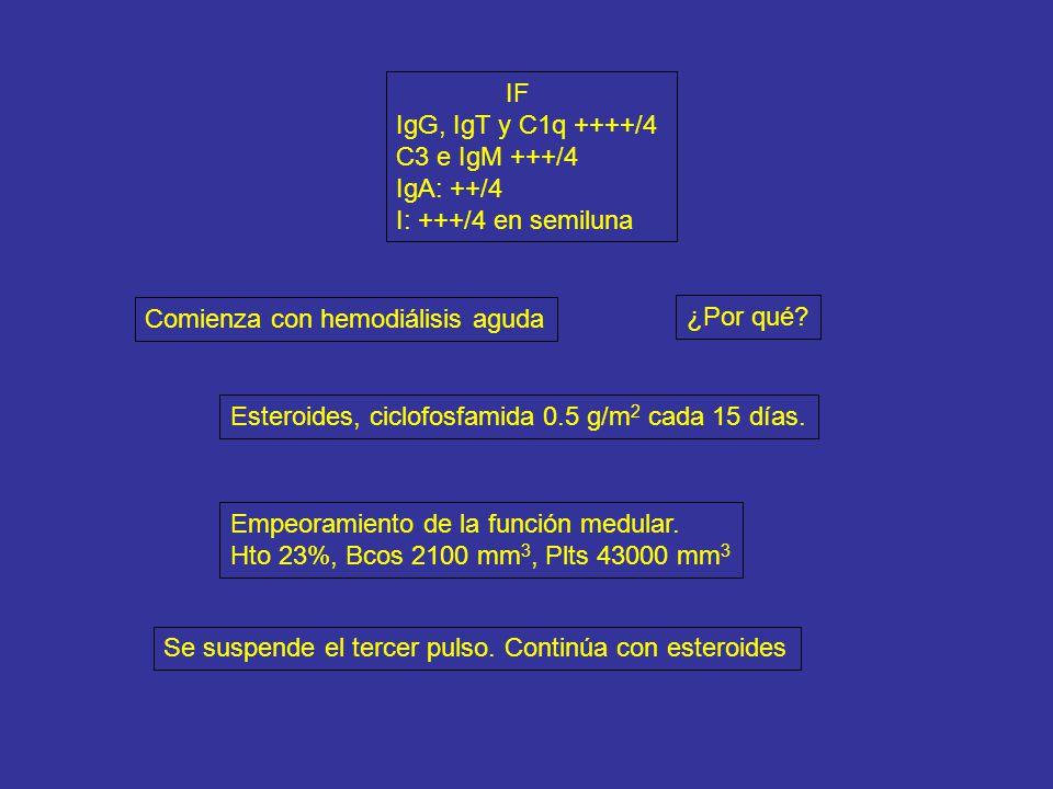IF IgG, IgT y C1q ++++/4. C3 e IgM +++/4. IgA: ++/4. I: +++/4 en semiluna. Comienza con hemodiálisis aguda.