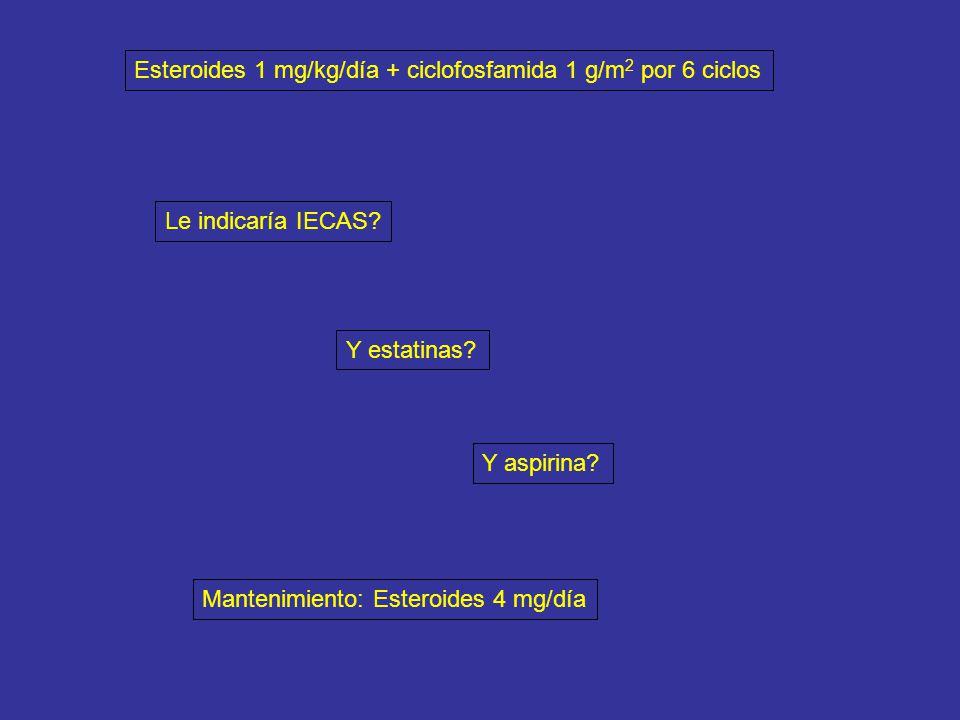 Esteroides 1 mg/kg/día + ciclofosfamida 1 g/m2 por 6 ciclos