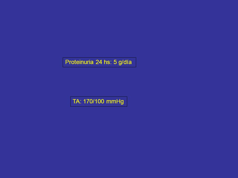 Proteinuria 24 hs: 5 g/día TA: 170/100 mmHg