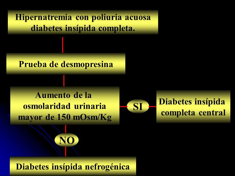 SI NO Hipernatremia con poliuria acuosa diabetes insípida completa.