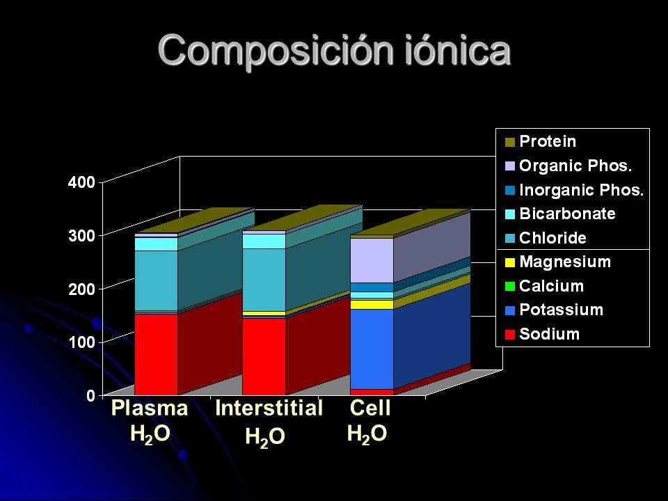 Composición iónica Plasma H2O Interstitial H2O Cell H2O 32 32