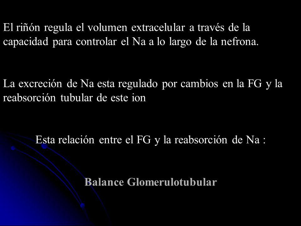 Balance Glomerulotubular