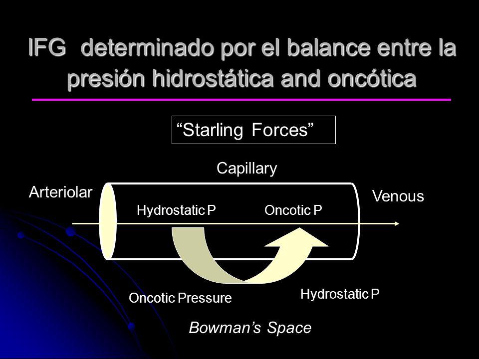 IFG determinado por el balance entre la presión hidrostática and oncótica