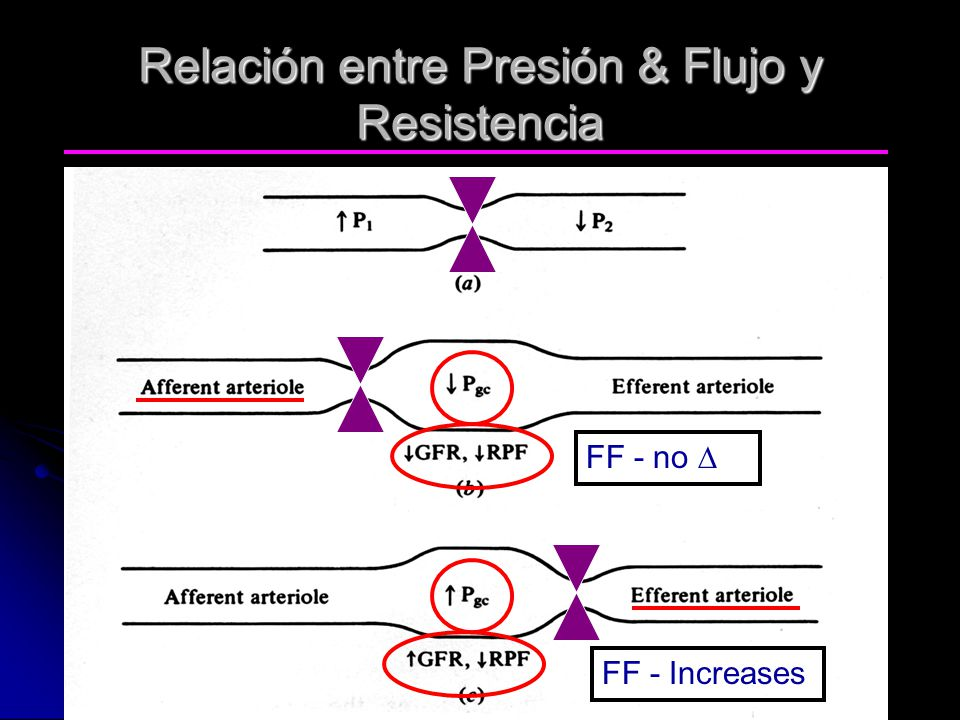Relación entre Presión & Flujo y Resistencia