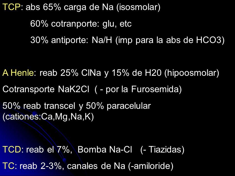 TCP: abs 65% carga de Na (isosmolar)