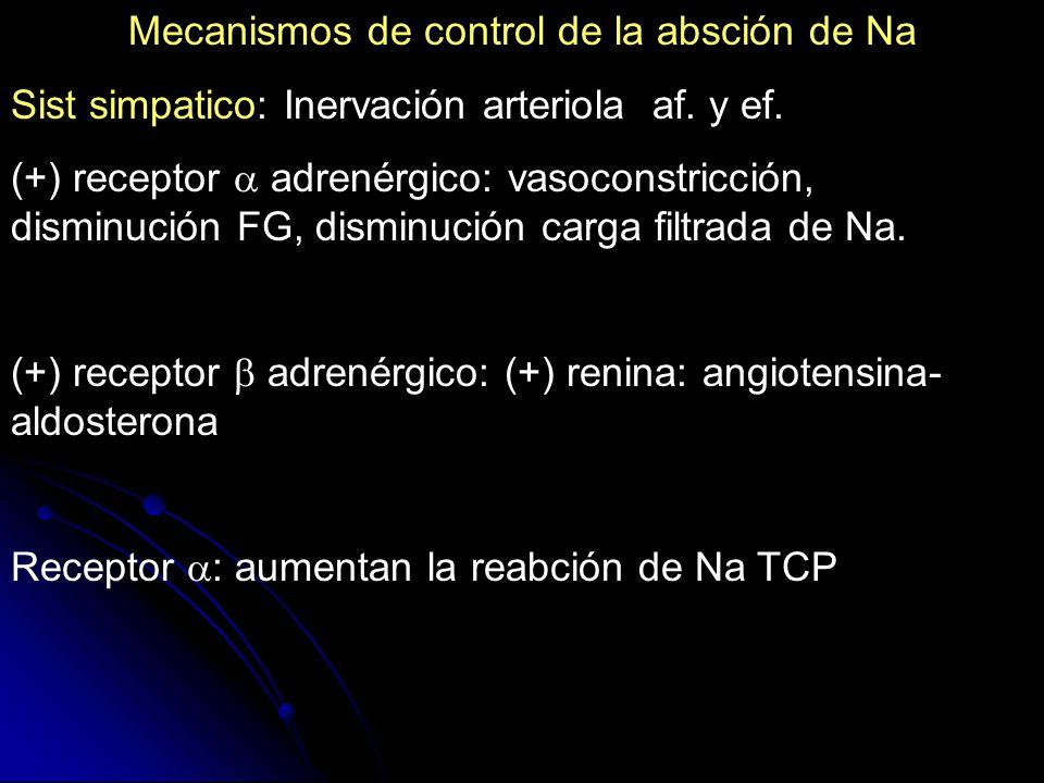 Mecanismos de control de la absción de Na