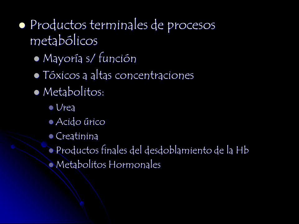 Productos terminales de procesos metabólicos