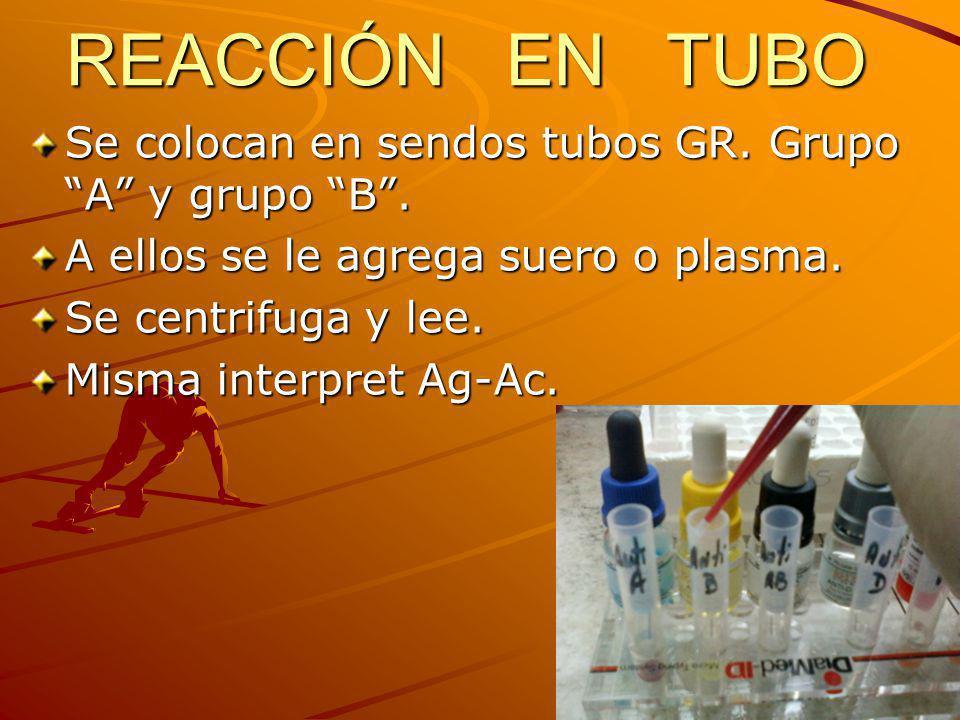 REACCIÓN EN TUBO Se colocan en sendos tubos GR. Grupo A y grupo B .