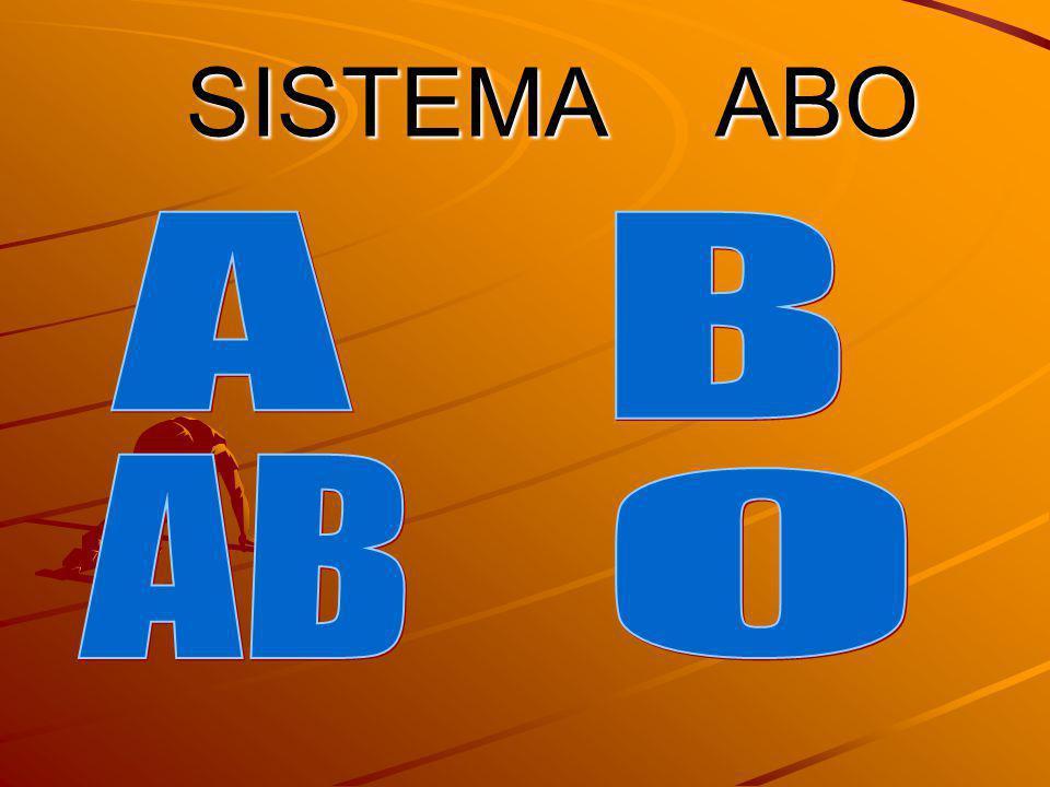 SISTEMA ABO A B AB O