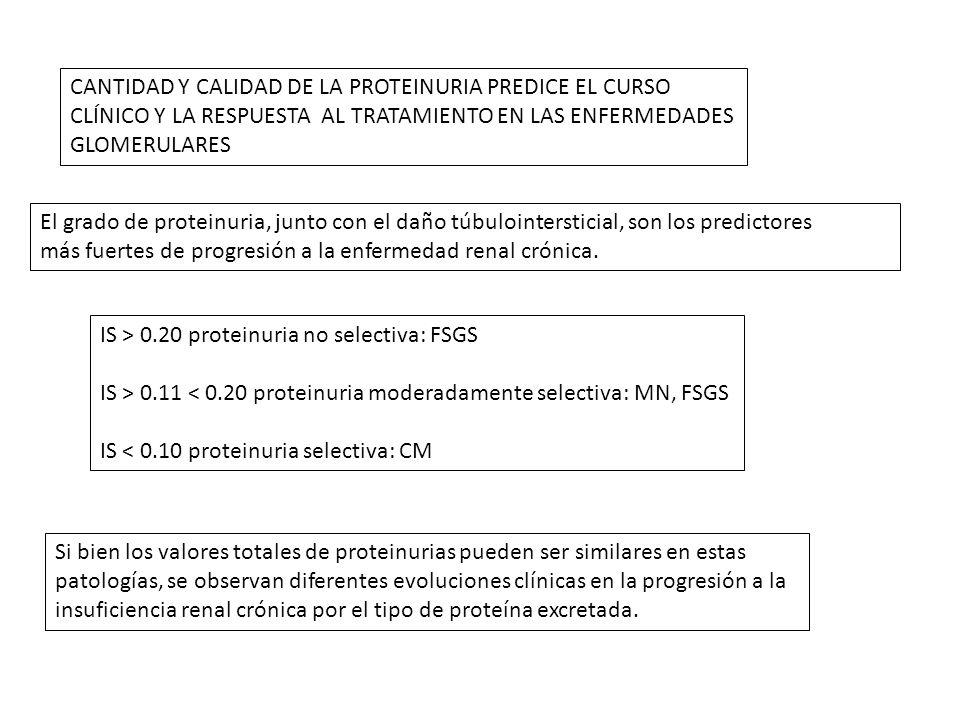 CANTIDAD Y CALIDAD DE LA PROTEINURIA PREDICE EL CURSO
