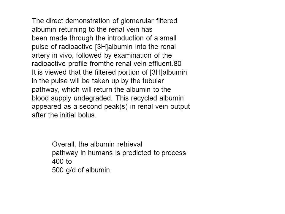 The direct demonstration of glomerular filtered