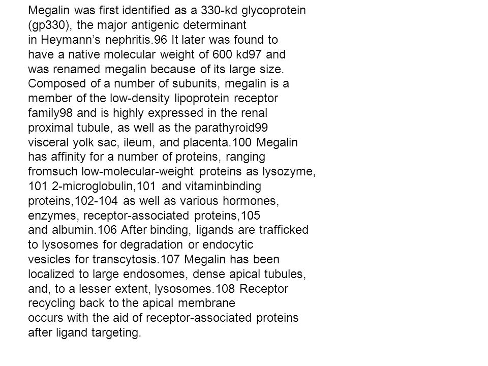 Megalin was first identified as a 330-kd glycoprotein