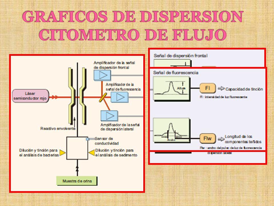 GRAFICOS DE DISPERSION CITOMETRO DE FLUJO