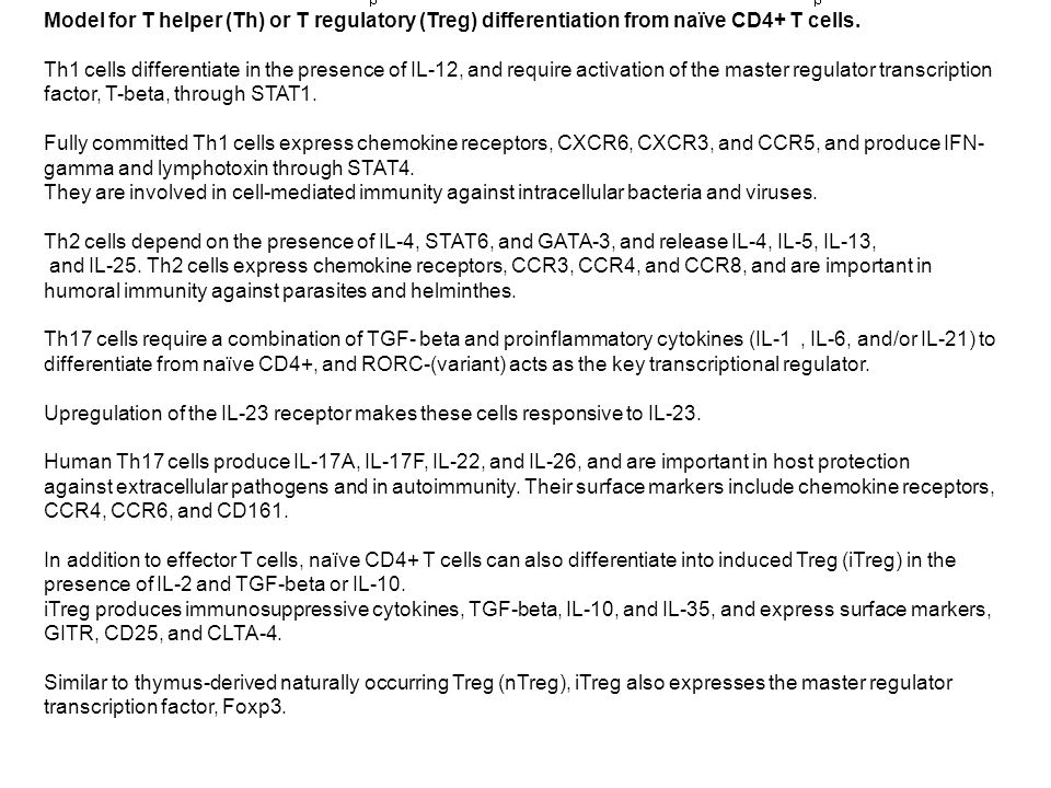 Model for T helper (Th) or T regulatory (Treg) differentiation from naïve CD4+ T cells.