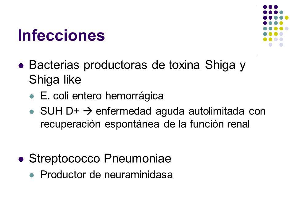 Infecciones Bacterias productoras de toxina Shiga y Shiga like