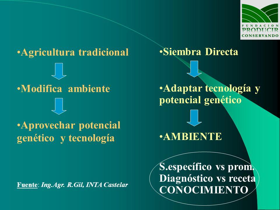 Agricultura tradicional Modifica ambiente