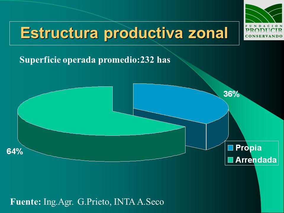 Estructura productiva zonal