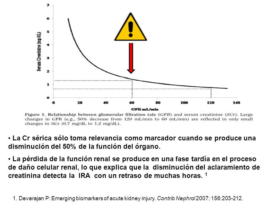La Cr sérica sólo toma relevancia como marcador cuando se produce una disminución del 50% de la función del órgano.