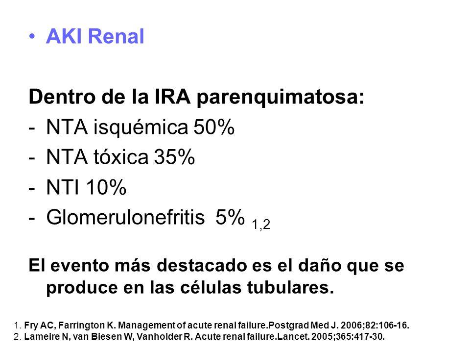 Dentro de la IRA parenquimatosa: NTA isquémica 50% NTA tóxica 35%