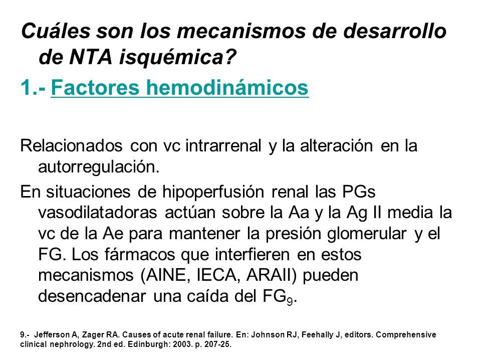 Cuáles son los mecanismos de desarrollo de NTA isquémica