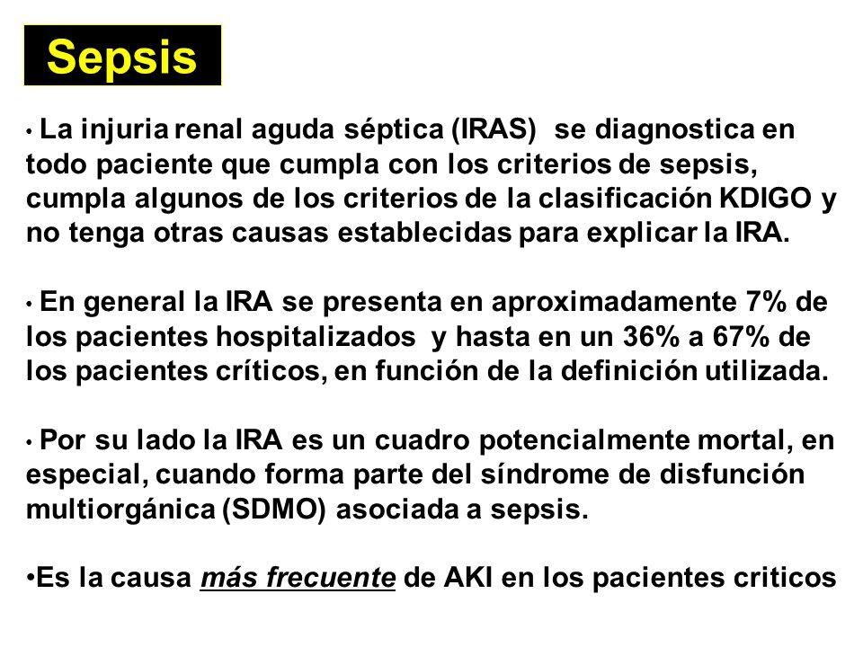 Sepsis Es la causa más frecuente de AKI en los pacientes criticos