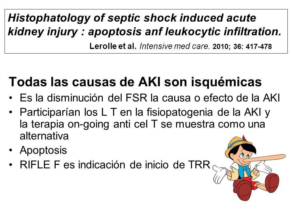 Todas las causas de AKI son isquémicas