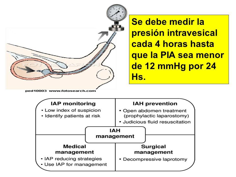 Se debe medir la presión intravesical cada 4 horas hasta que la PIA sea menor de 12 mmHg por 24 Hs.