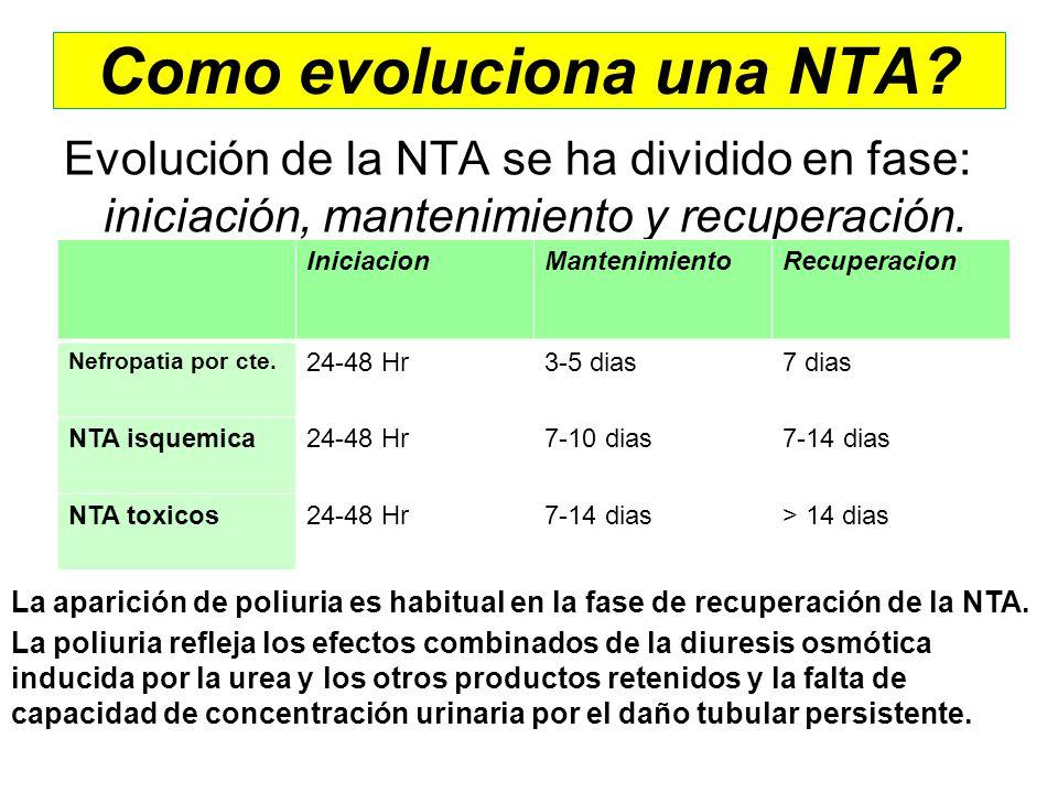 Como evoluciona una NTA