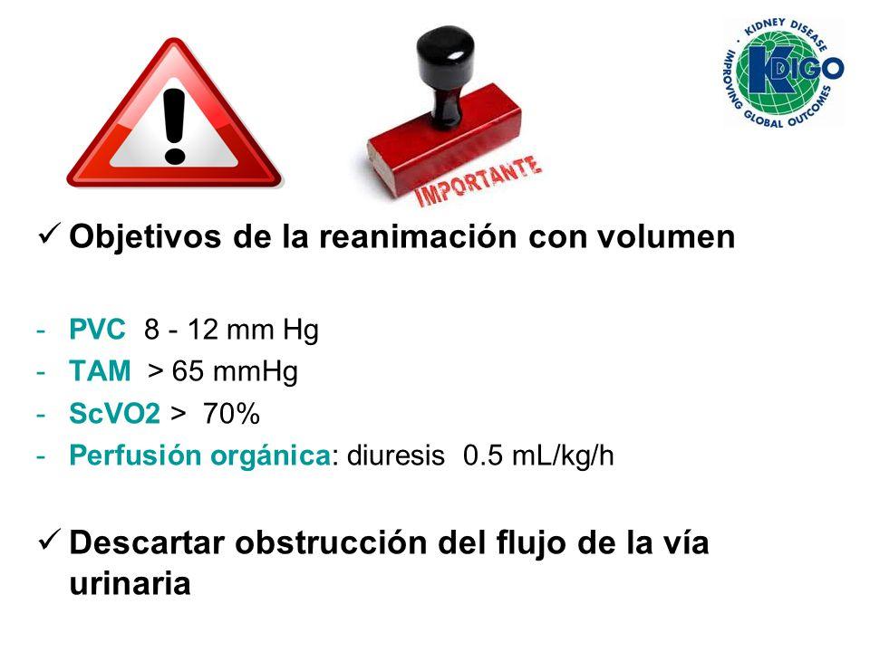 Objetivos de la reanimación con volumen