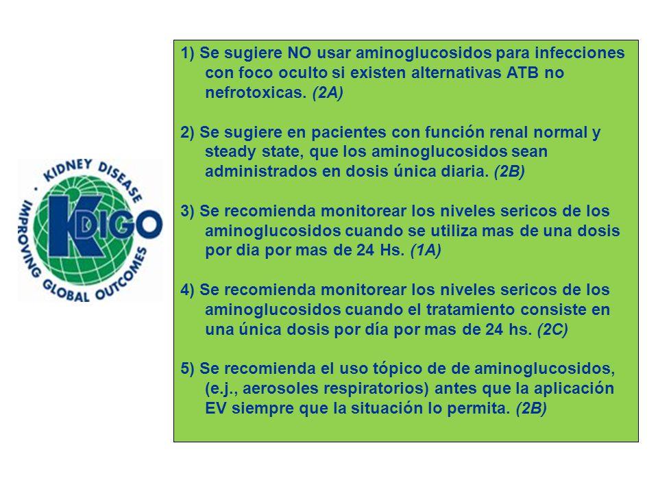 1) Se sugiere NO usar aminoglucosidos para infecciones con foco oculto si existen alternativas ATB no nefrotoxicas. (2A)