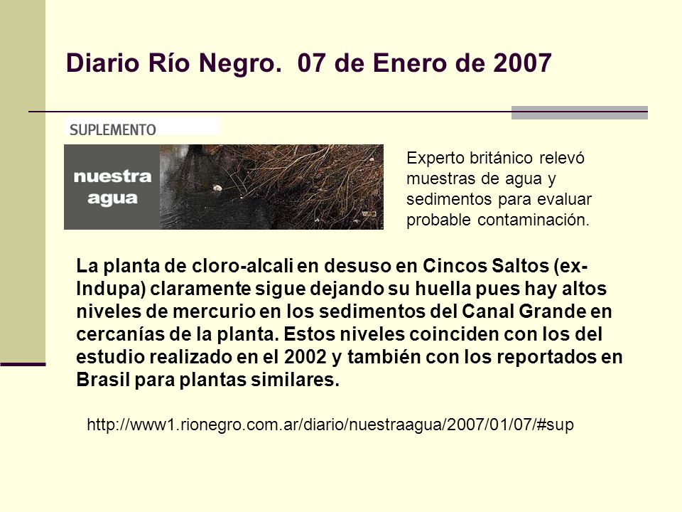 Diario Río Negro. 07 de Enero de 2007