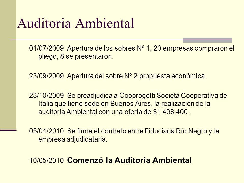 Auditoria Ambiental 01/07/2009 Apertura de los sobres Nº 1, 20 empresas compraron el pliego, 8 se presentaron.
