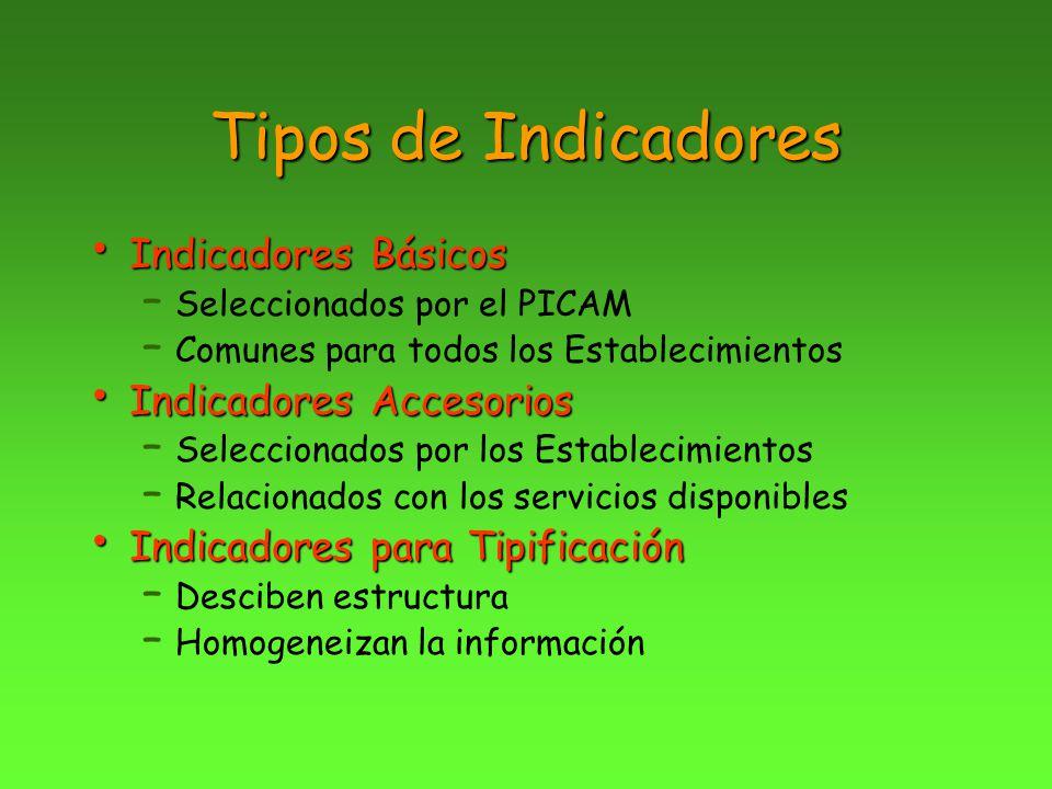 Tipos de Indicadores Indicadores Básicos Indicadores Accesorios