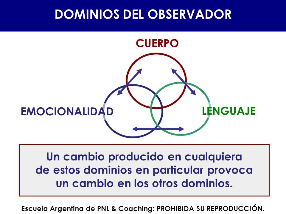 DOMINIOS DEL OBSERVADOR