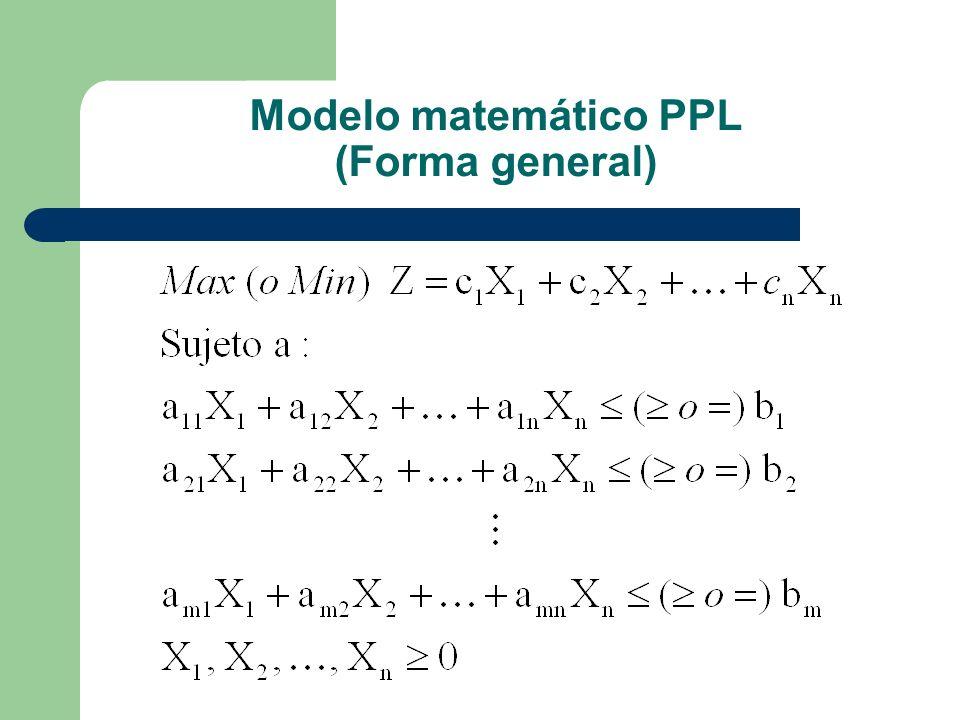 Modelo matemático PPL (Forma general)