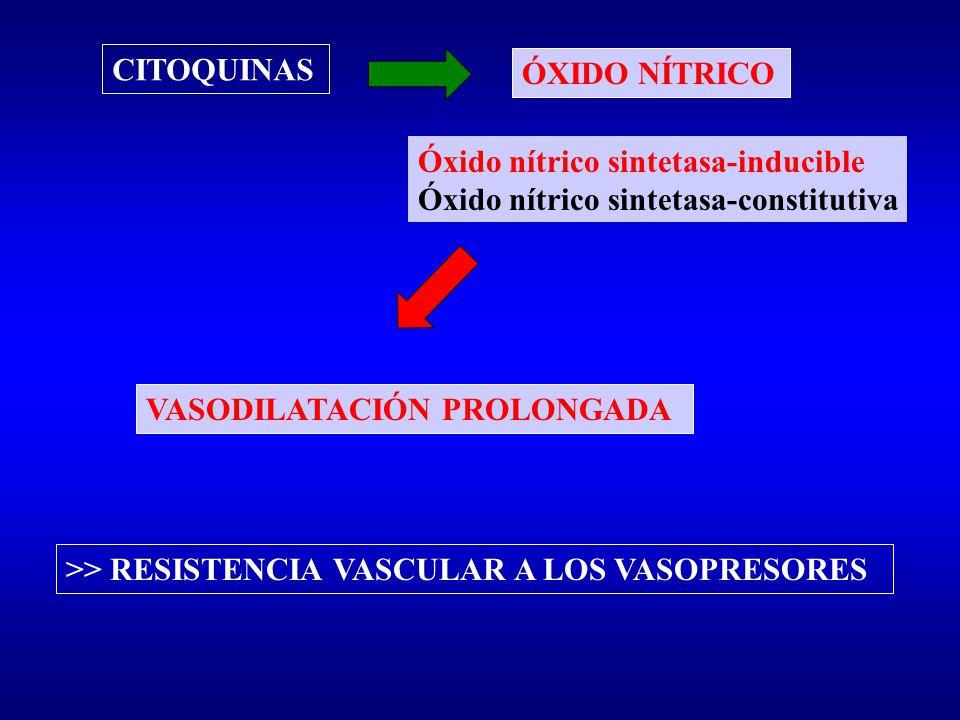 CITOQUINAS ÓXIDO NÍTRICO. Óxido nítrico sintetasa-inducible. Óxido nítrico sintetasa-constitutiva.