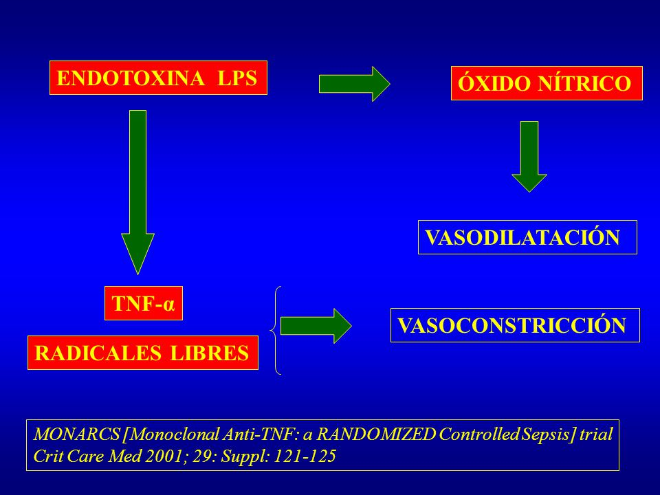 ENDOTOXINA LPS ÓXIDO NÍTRICO VASODILATACIÓN TNF-α VASOCONSTRICCIÓN