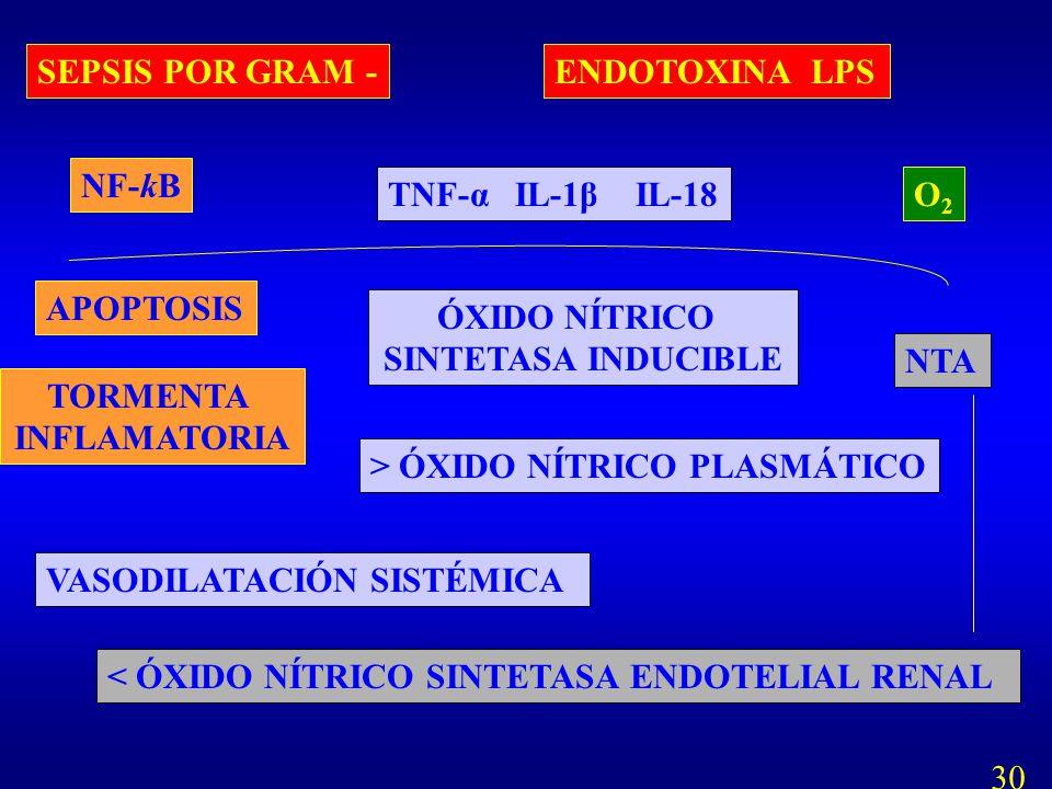 SEPSIS POR GRAM - ENDOTOXINA LPS. NF-kB. TNF-α IL-1β IL-18. O2. APOPTOSIS. ÓXIDO NÍTRICO.