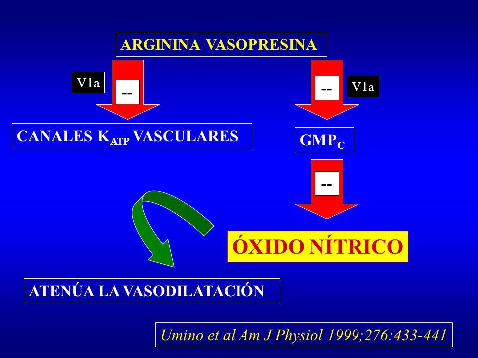 ÓXIDO NÍTRICO ARGININA VASOPRESINA -- -- CANALES KATP VASCULARES GMPC