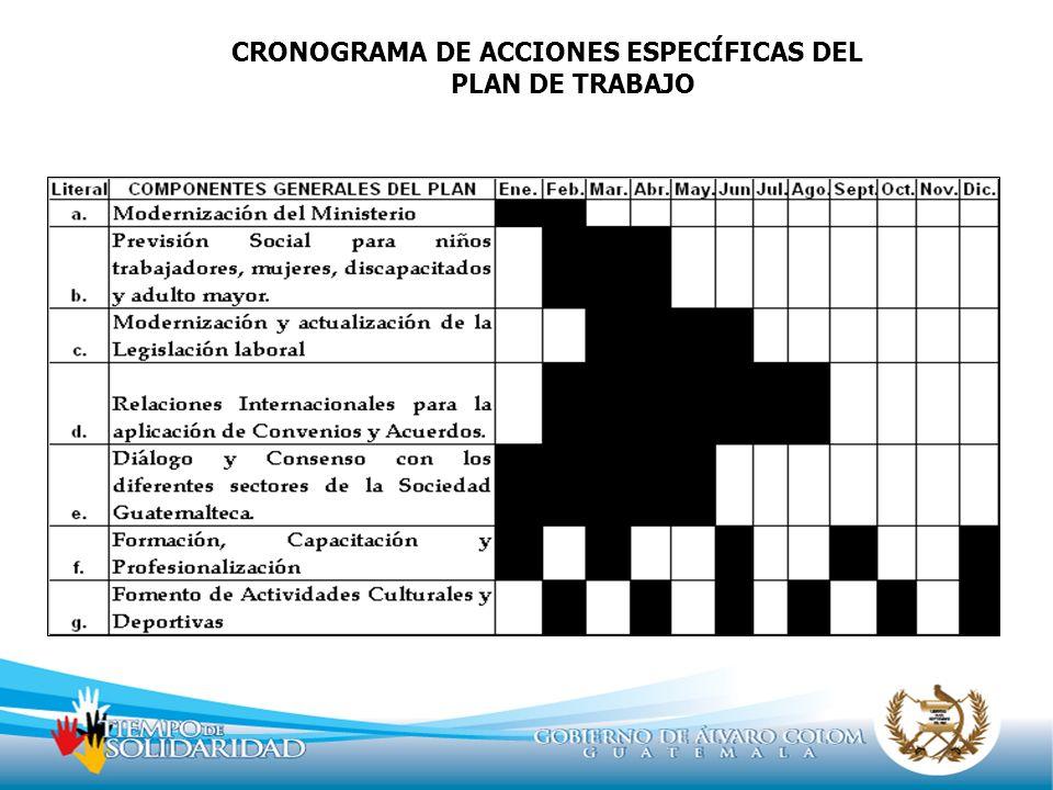 CRONOGRAMA DE ACCIONES ESPECÍFICAS DEL PLAN DE TRABAJO