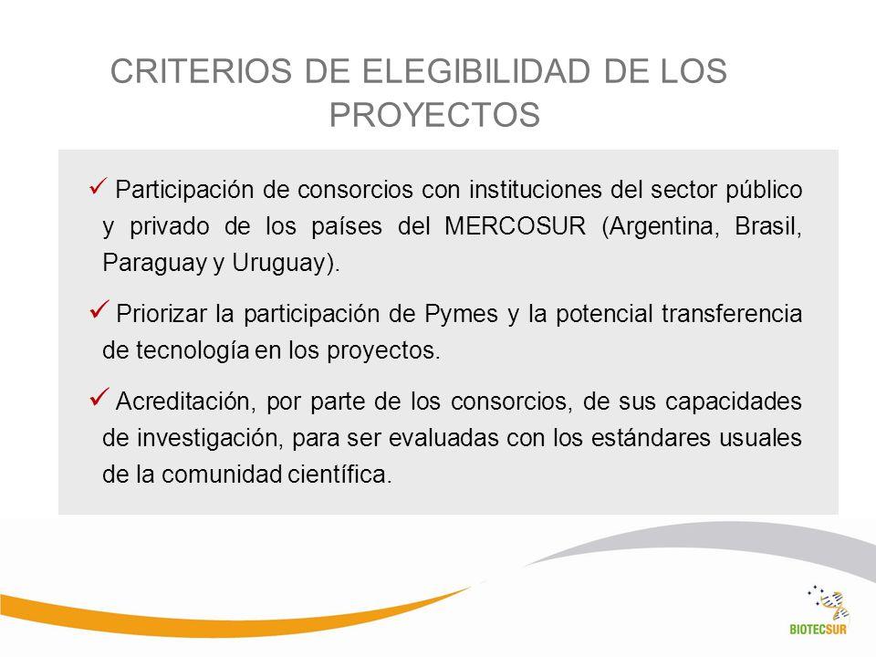 CRITERIOS DE ELEGIBILIDAD DE LOS PROYECTOS