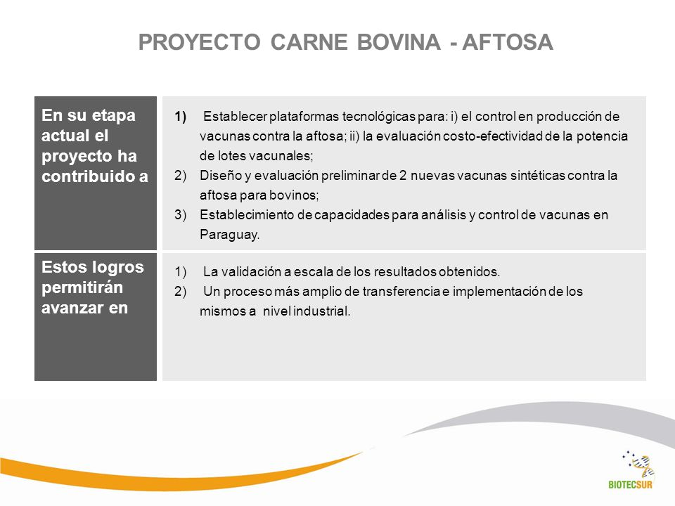 PROYECTO CARNE BOVINA - AFTOSA
