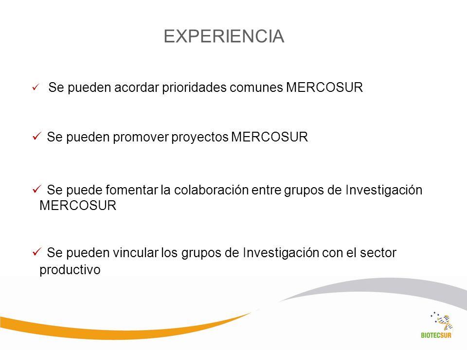 EXPERIENCIA Se pueden promover proyectos MERCOSUR