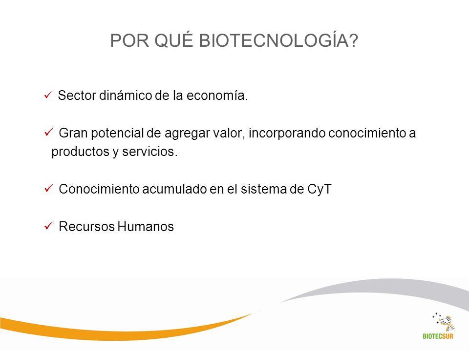 POR QUÉ BIOTECNOLOGÍA Sector dinámico de la economía. Gran potencial de agregar valor, incorporando conocimiento a productos y servicios.