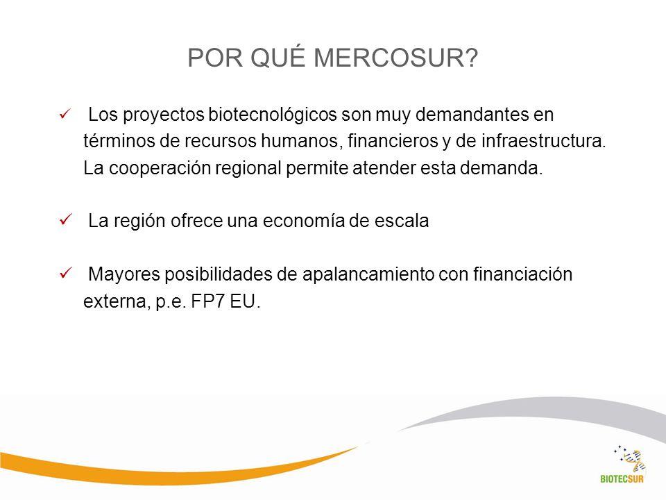 POR QUÉ MERCOSUR La región ofrece una economía de escala