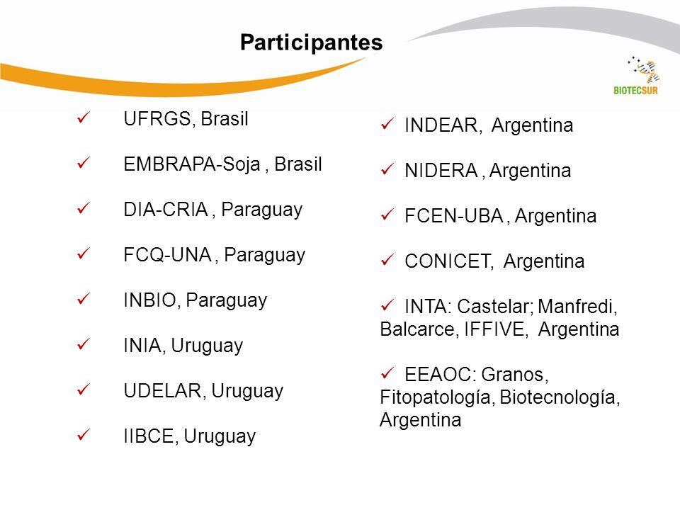 Participantes UFRGS, Brasil INDEAR, Argentina EMBRAPA-Soja , Brasil